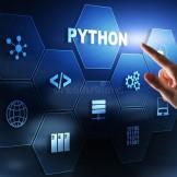 python training institute
